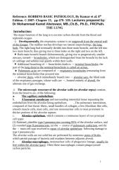 lung 13.doc