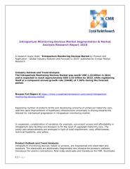 Intrapartum Monitoring Devices Market Segmentation & Market Analysis Research Report 2018.pdf