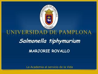 Exposición_Salmonella_typhimurium.pdf