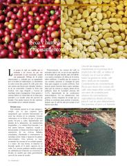 SecoHumedo.pdf