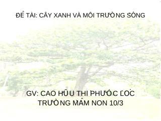 Cay xanh va Moi truong song(2).ppt