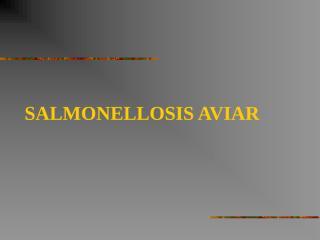 SALMONELLOSIS_AVIAR[1].ppt